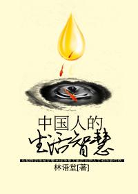 中国人的生活智慧