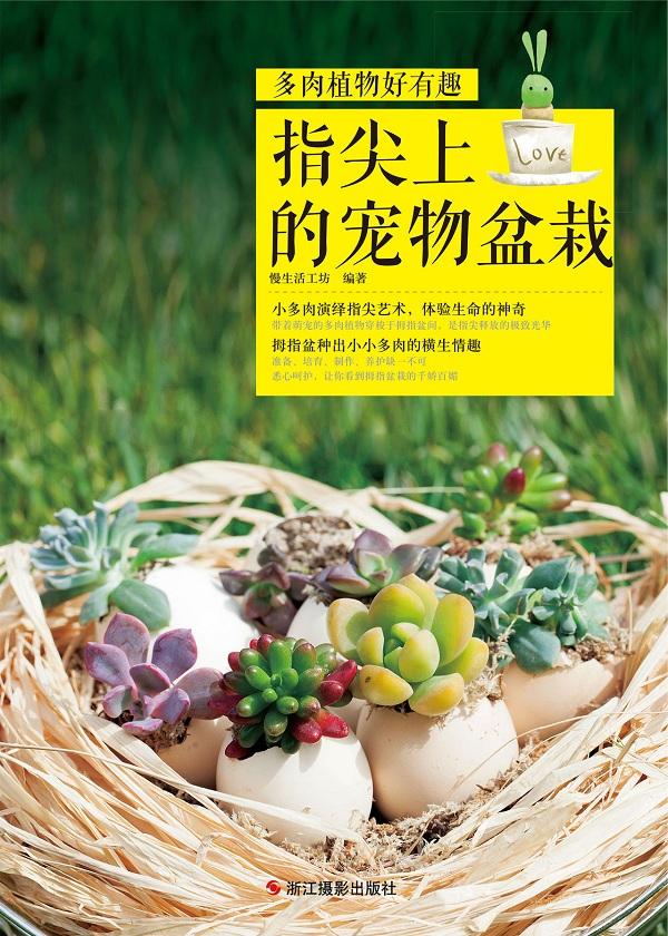 多肉植物好有趣:指尖上的宠物盆栽