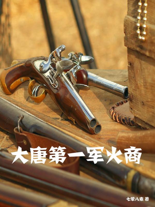 大唐第一军火商