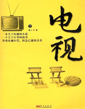 电视(《我们的四十年》原著)