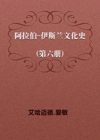 阿拉伯-伊斯兰文化史(第六册)