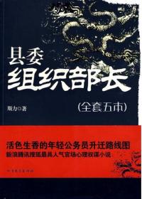县委组织部长(全五册)