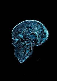 脑罪-Brain