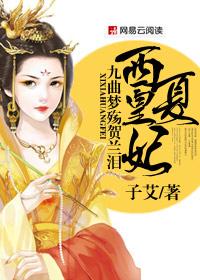 西夏皇妃:九曲梦殇贺兰泪