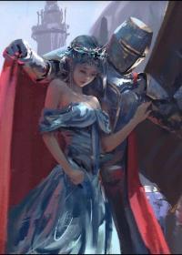 复仇的骑士