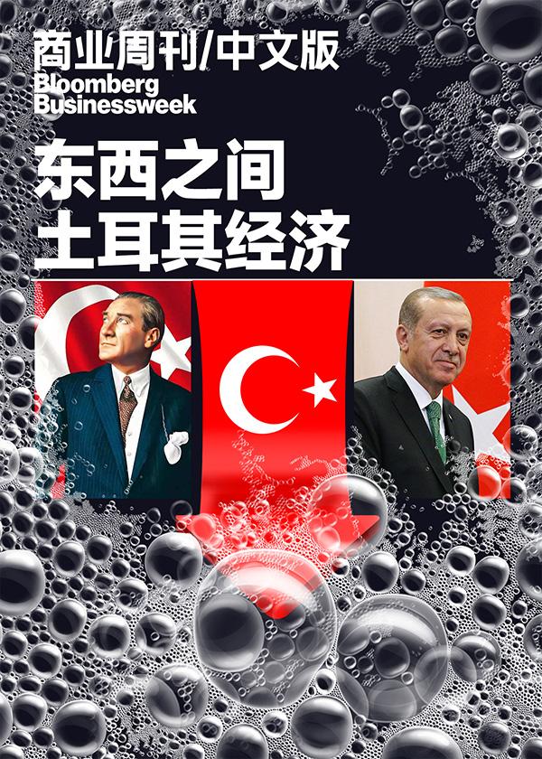 东西之间:土耳其经济