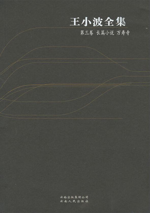 王小波全集·第三卷:长篇小说