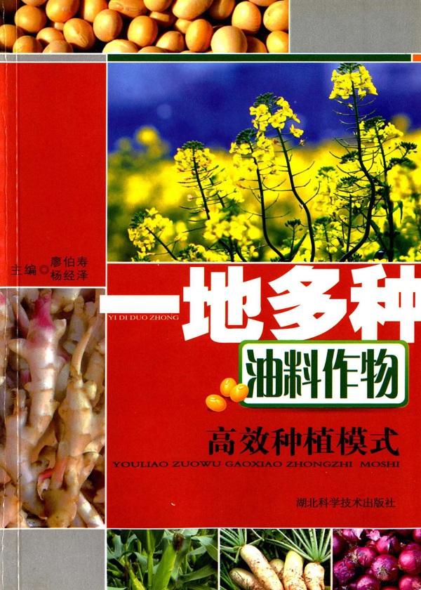 一地多种油料作物高效种植模式