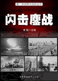 第二次世界大战史丛书·闪击鏖战