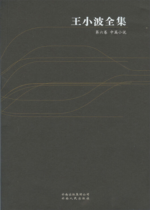 王小波全集·第六卷:中篇小说
