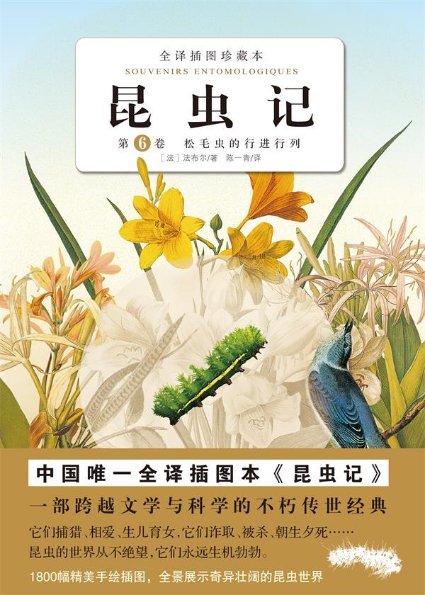 昆虫记.第六卷