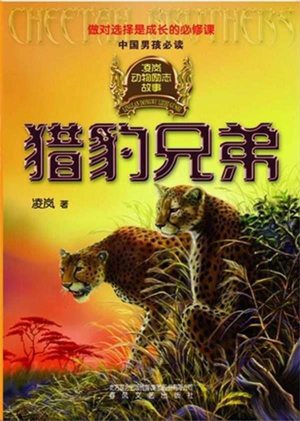 凌岚动物励志故事:猎豹兄弟