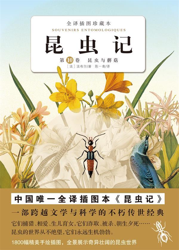 昆虫记.第十卷
