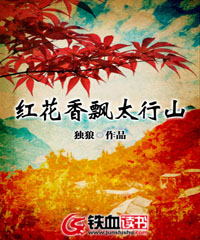 红花香飘太行山