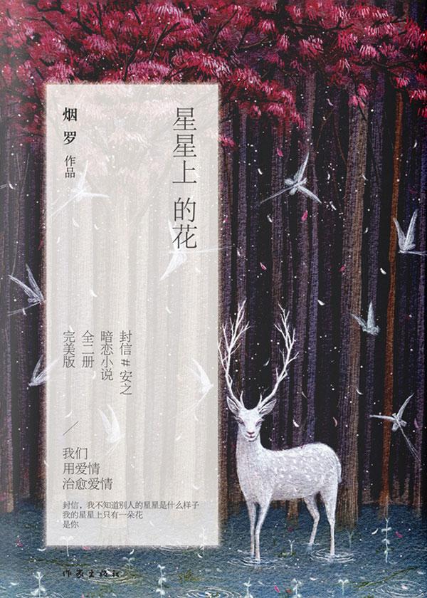 星星上的花(全二册)