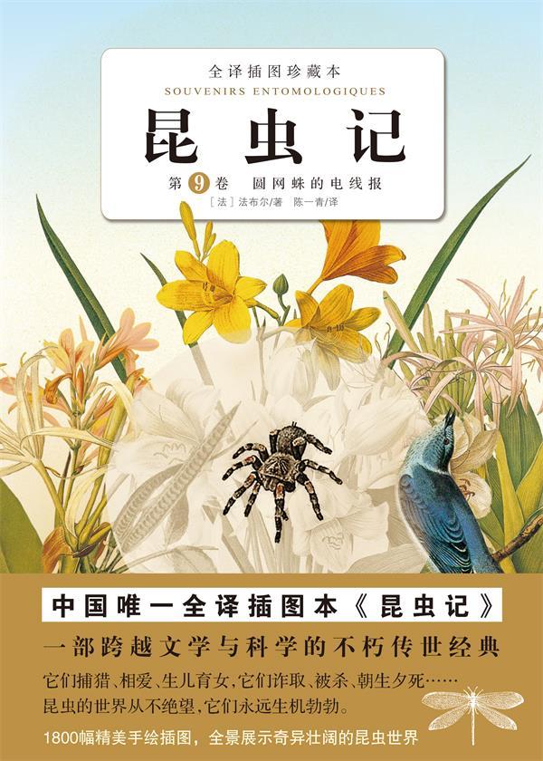 昆虫记·第九卷
