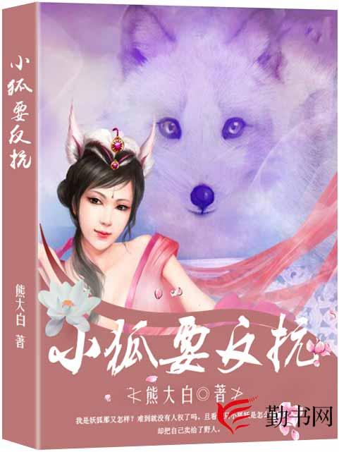 小狐要反抗小说