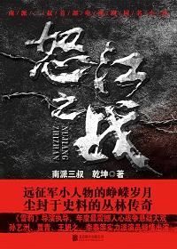 怒江之战(全集新版)