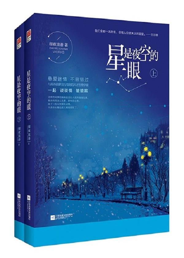 星是夜空的眼(全二册)