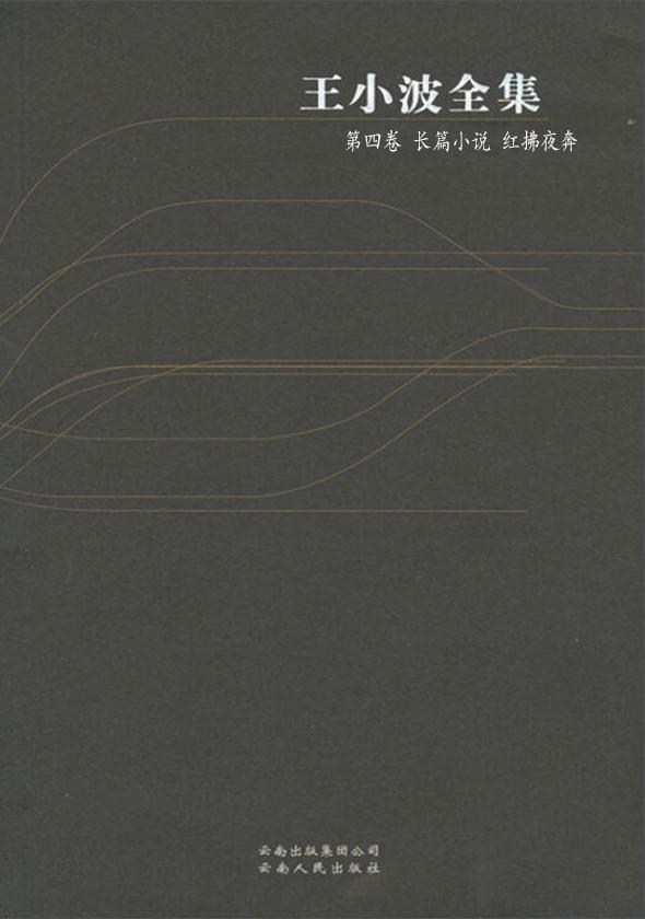 王小波全集·第四卷:长篇小说