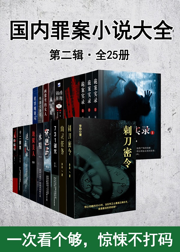 国内罪案小说大全(2)(共25册)