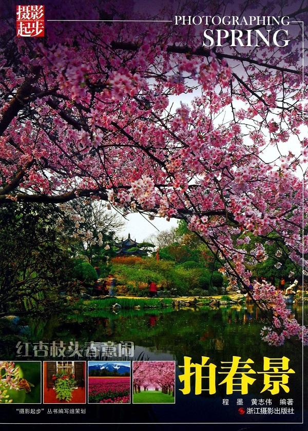 红杏枝头春意闹:拍春景