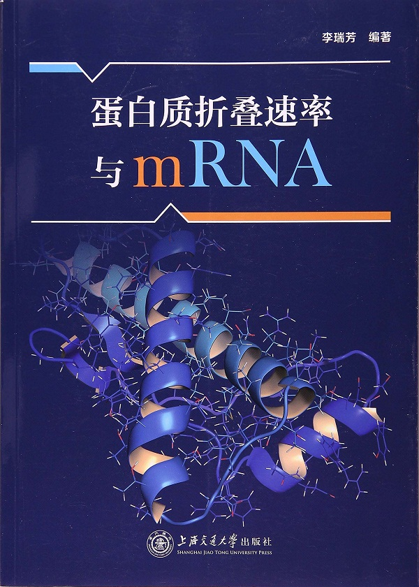 蛋白质折叠速率与mRNA