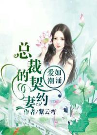 爱如潮涌:总裁的契约妻