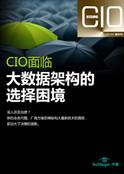 《CIO决策世界》2014精华刊