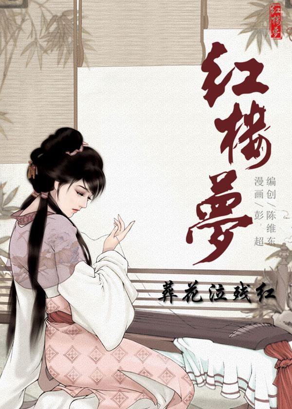红楼梦08:葬花泣残红