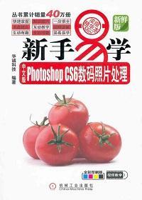 中文版PhotoshopCS6数码照片处理