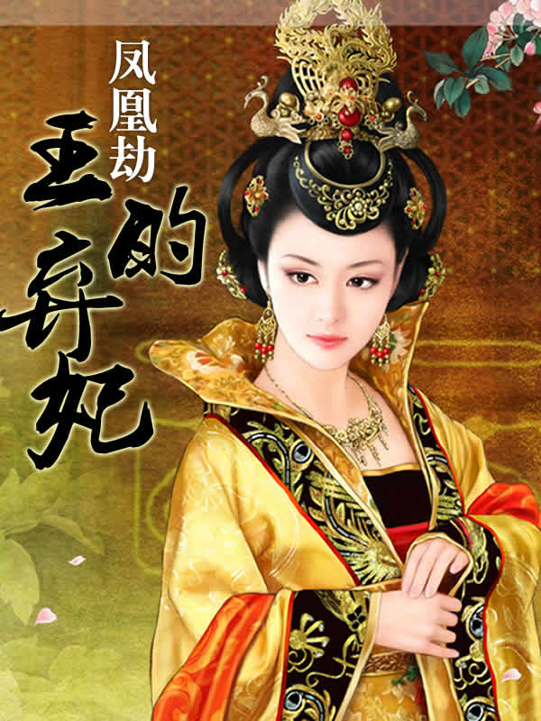 凤凰劫:王的弃妃