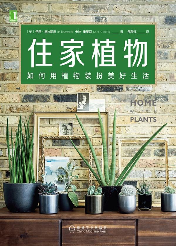 住家植物:如何用植物装扮美好生活