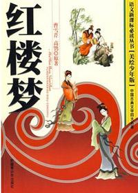 四大名著·红楼梦(美绘少年版)