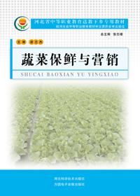 蔬菜保鲜与营销