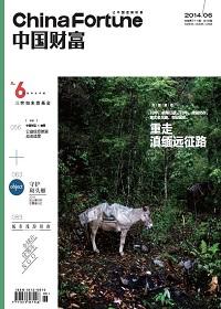 《中国财富》2014年6月刊