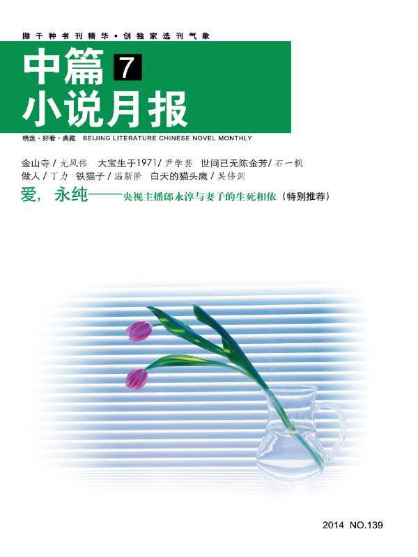 北京文学中篇小说月报2014年7月