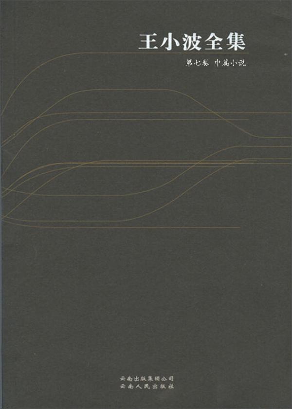 王小波全集·第七卷:中篇小说