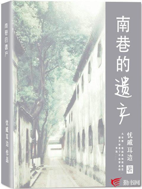 南巷的遗产小说