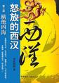 怒放的西汉(第二部):横绝四海