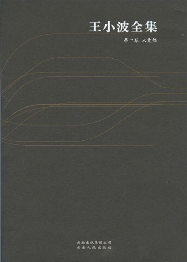 王小波全集·第十卷:未竟稿