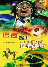 巴西遇上世界杯(1)