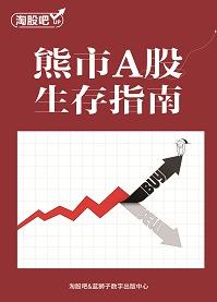熊市A股生存指南(资深投资者实战经验分享)