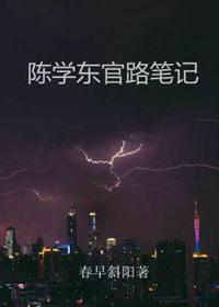 陈学东官路笔记