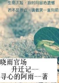 白晓雨官场升迁记