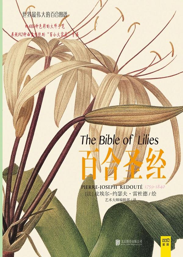 百合圣经 (大本精装)