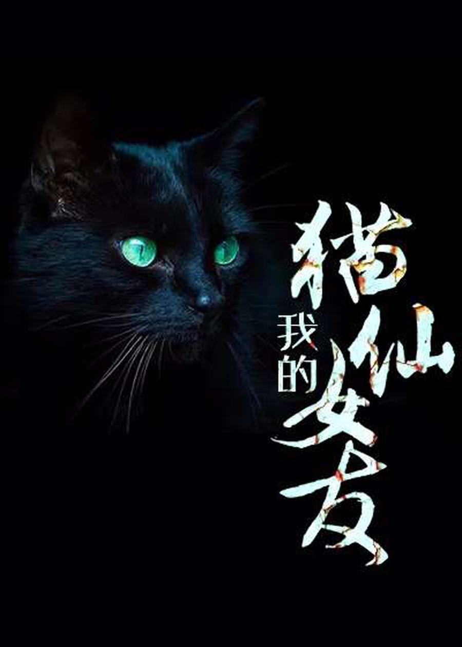 我的猫仙女友小说