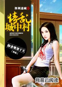 深圳迷城II:城中村纪实