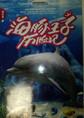 海豚王子历险记