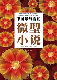 中国最好看的微型小说